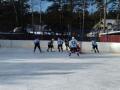 хоккей март 1_1