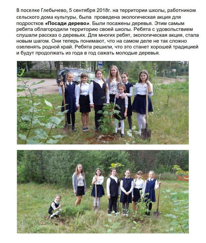 В поселке Глебычево_1